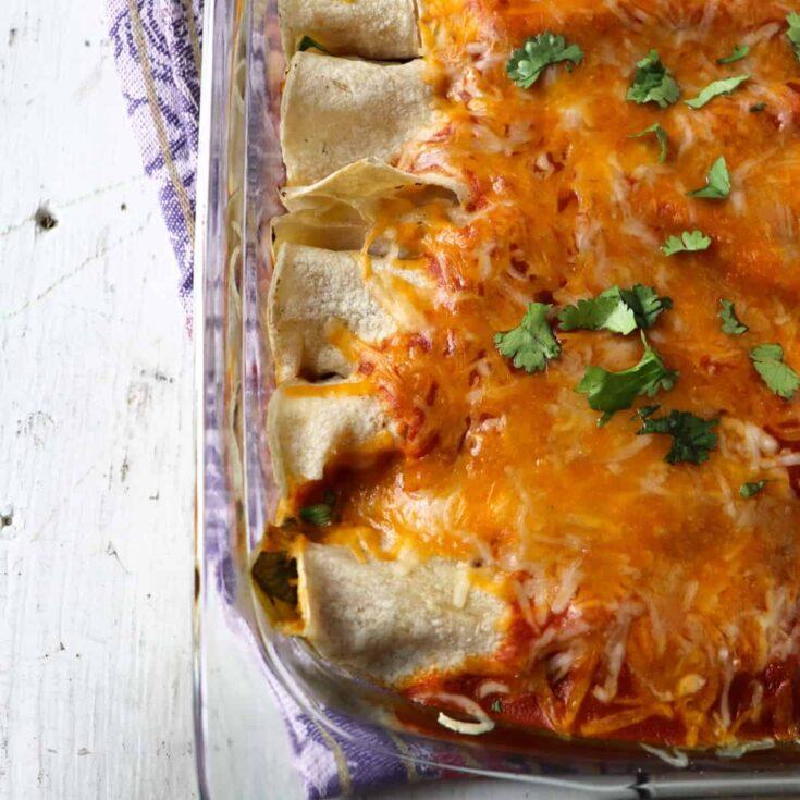 chicken enchiladas featured