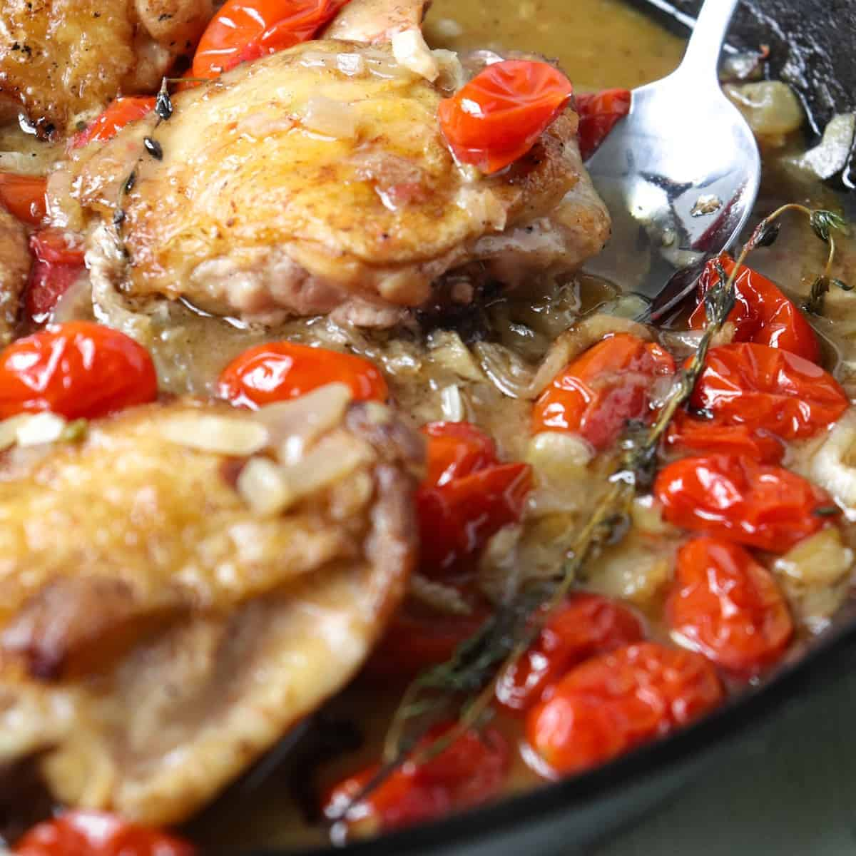 chicken thighs with fennel featured