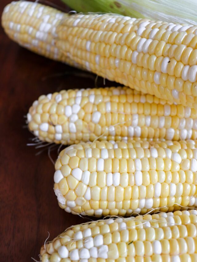 How to Freeze Corn off the Cob